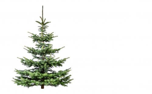 The Non-Christmas Playlist