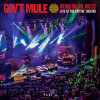 "Gov't Mule ""Bring On the Music (Live)"""