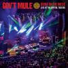 "Gov't Mule ""Beautifully Broken (Live)"""