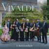 Concerto for Strings in D Major, RV 126: III. Allegro molto