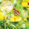 Concerto No. E Major, RV. 269 Frühling - Spring: Allegro