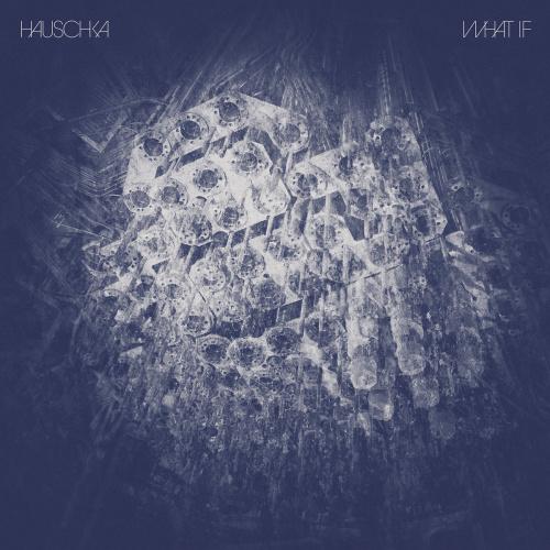 Haushcka: What If
