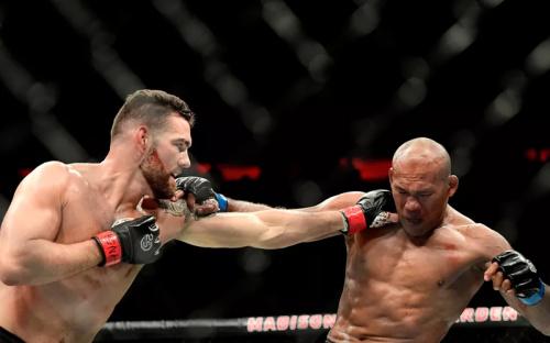 UFC: Reyes vs Weidman Preview