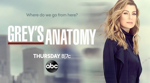 "Sponge / ""Plowed"" Cover To Be Featured In Grey's Anatomy on ABC"