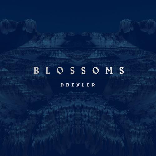 Drexler Releases New Single 'Blossoms'