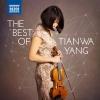 Violin Sonata in A Minor, Op. 27 No. 2: II. Malinconia. Poco lento