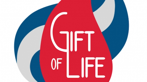 """SEAWAVES / """"Sons And Daughters"""" Featured In Gift Of Life Bone Marrow Foundation Promo"""
