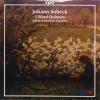 Wind Quintet in G Minor, Op. 14: IV. Tarantella - Vivo