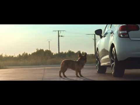 CITROËN C3 Streching Dog 2014 - 2016