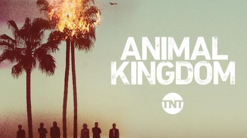 "Paco / ""Mi Decision"" To Be Featured In Upcoming Episode Of TNT's Animal Kingdom"