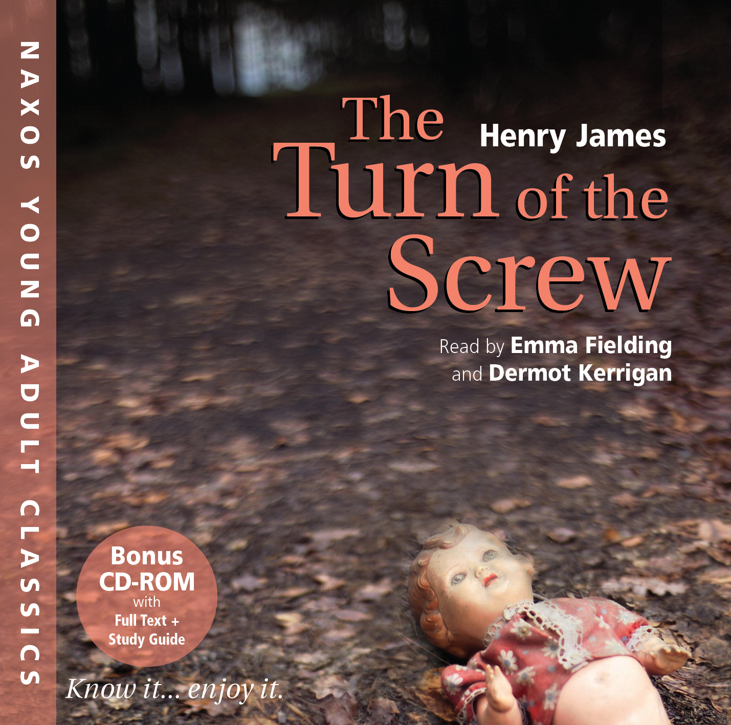 the mysteries in the turn of the screw by henry james