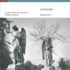 Symphony No. 3: II. Largo - Presto - Largo -
