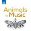 Carnival of the Animals: VII. Aquarium