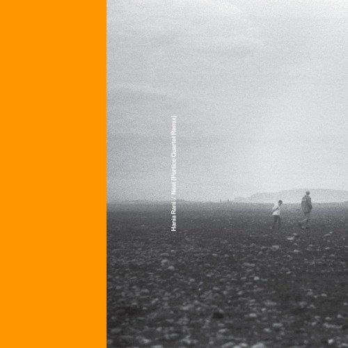 Nest (Portico Quartet Remix)