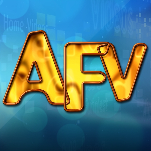 America's Funniest Home Videos Montage Features PICTURE PERFECT DAYS