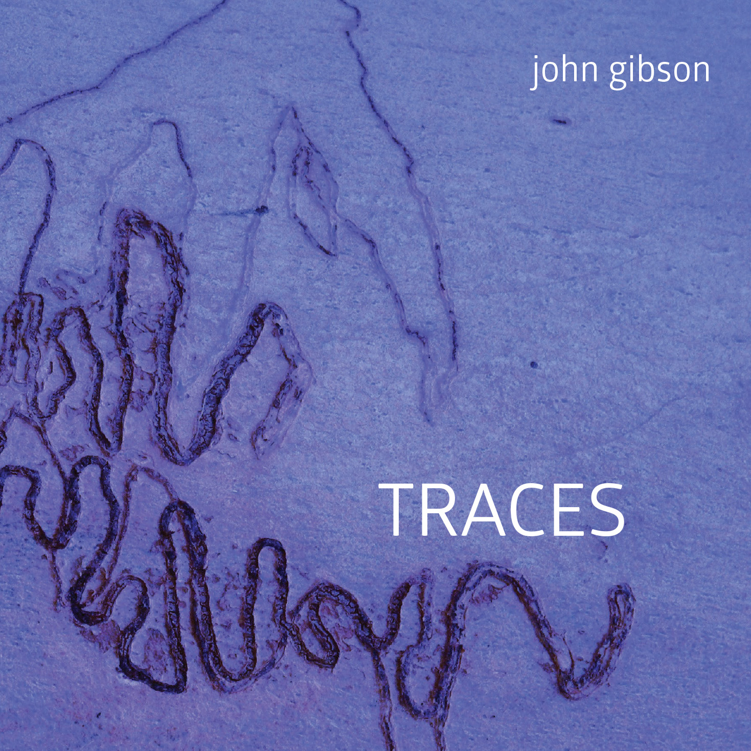 John Gibson: Traces