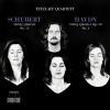 """Tetzlaff Quartet """"String Quartet No. 15 in G Major, Op. 161, D. 887: I. Allegro molto moderato"""""""