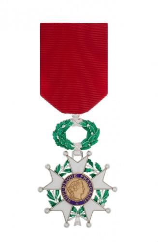Une médaille pour Brigitte Fontaine