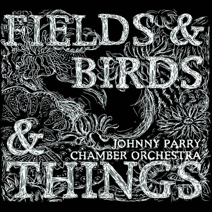 Fields & Birds & Things
