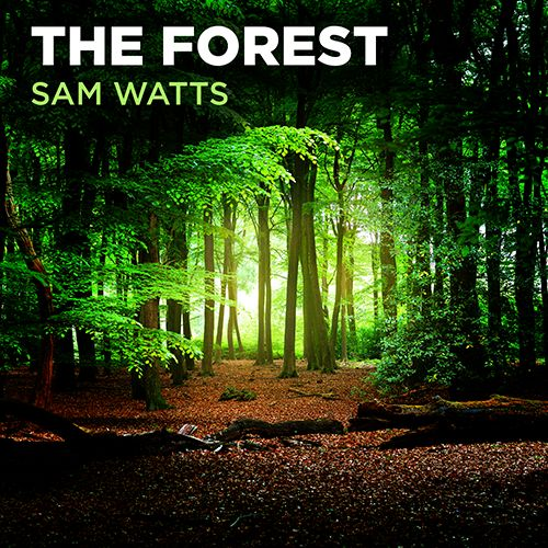 The Forest - Sam Watts