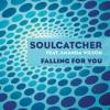 Falling For You (feat. Amanda Wilson) [Radio Version]
