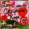 Love Is A Christmas Rose