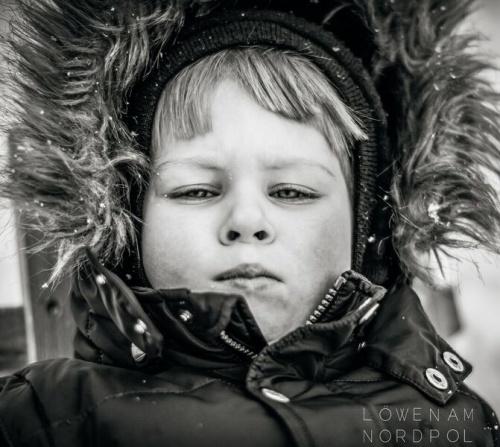 Löwen am Nordpol - Debütalbum ab 3.11. überall erhältlich
