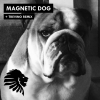 Magnetic Dog
