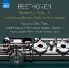 Duo for Clarinet & Bassoon in C Major, WoO 27 No. 1 (Arr. K. Seo for Flute & Bassoon): II. Larghetto sostenuto