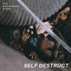 Self Destruct - Single