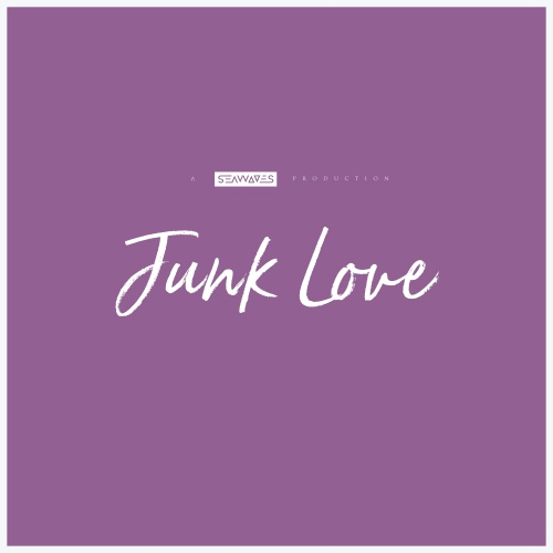 Junk Love - Single