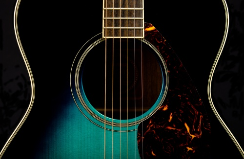 Focus On: Guitar