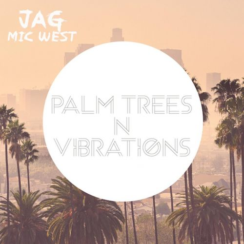 Palm Trees N Vibrations