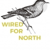 "Wired For North ""Wild Side (Full)"""