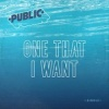 One That I Want - Single