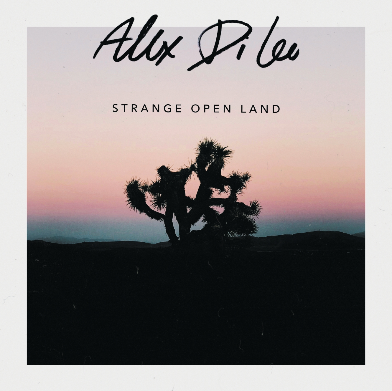 Strange Open Land - EP