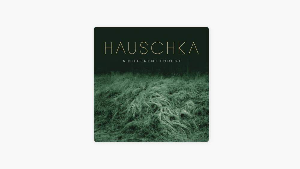 """<p style=""""text-align: center;""""><span style=""""font-size: 12pt;"""">Le nouvel album de <strong>Hauschka</strong> <em>""""A Different Forest""""</em> est sorti</span>"""